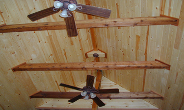 Customer Comments And Testimonials Pine Ceiling Bear
